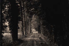 02-Road-to-nowwhere